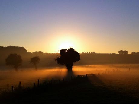 Primal sunrise